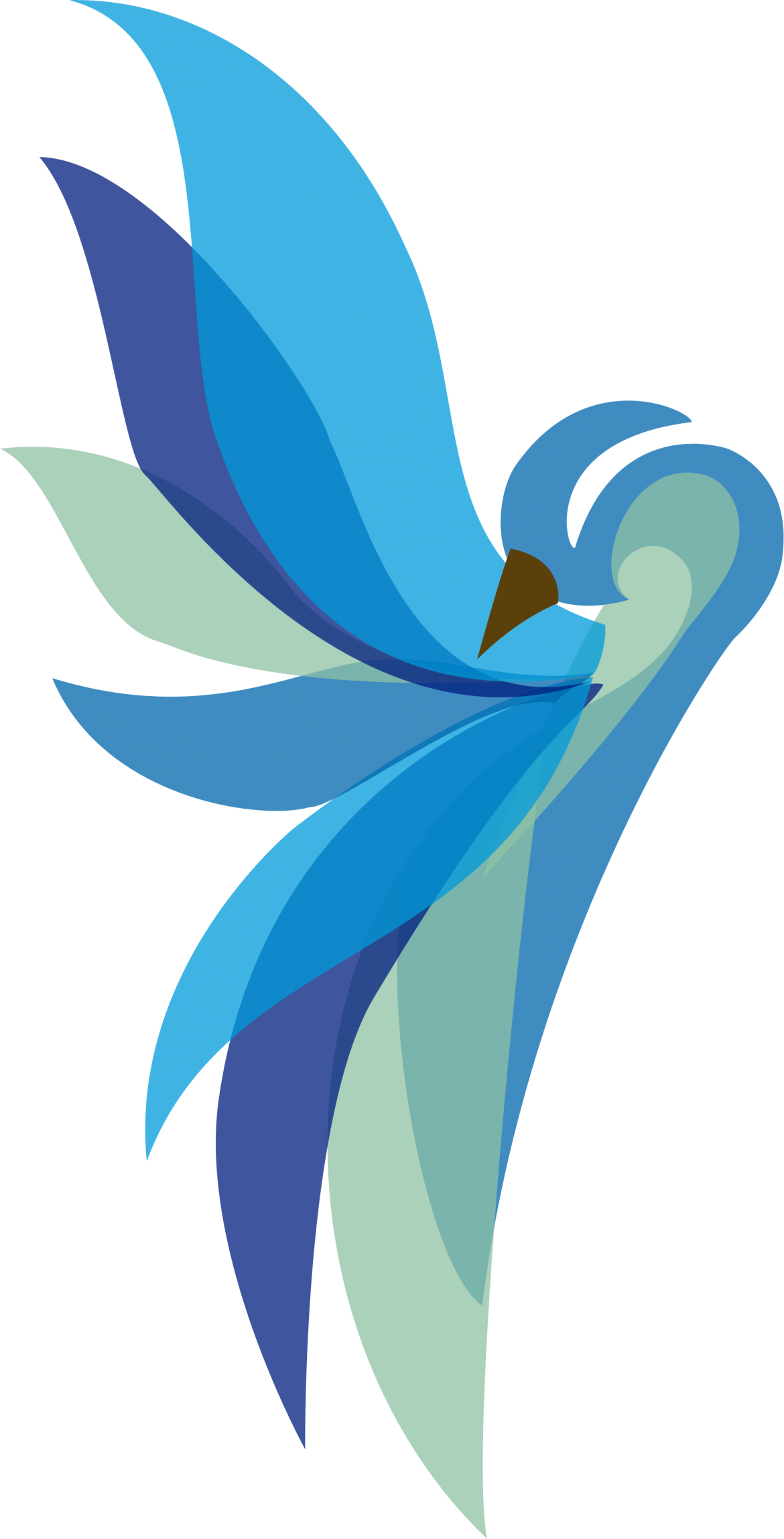 Logo-SmBird-REVISED.png